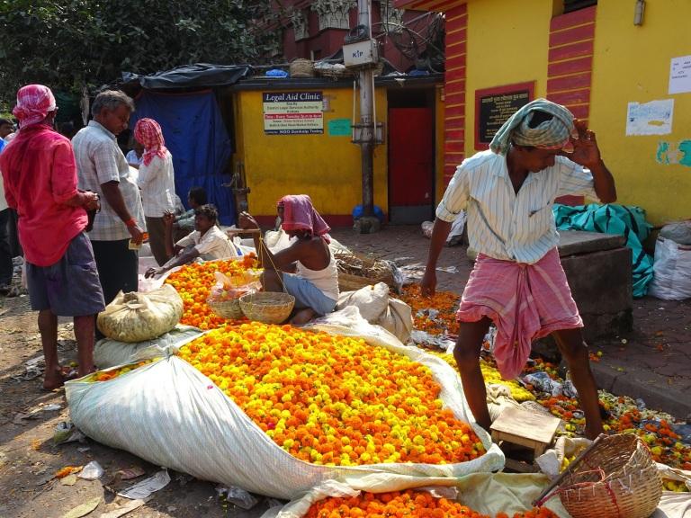flower market calcutta marigold